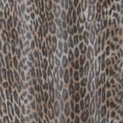 leopard-naturalnyy